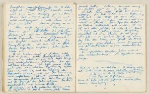 Ein Auszug aus dem Tagebuch von 1933.